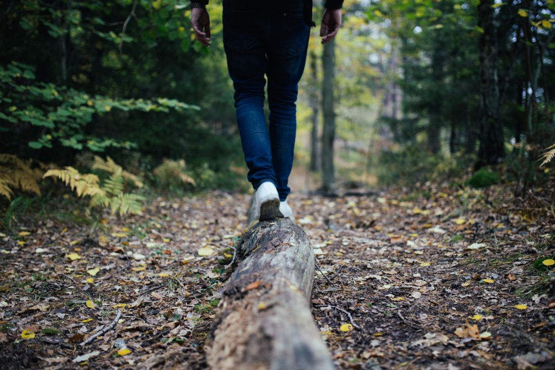 Why green space can boost health and wellbeing